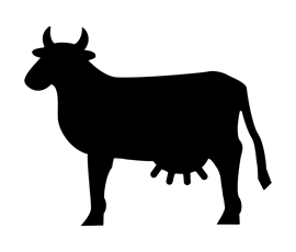 Image of Cow Shaped Blackboard