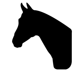 Image of Horse Shaped Chalkboard