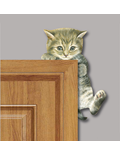 Image of Climbing Cat - Corner Animal