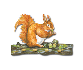 Image of Squirrel - Key Holders