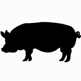 Image of Pig Shaped Chalkboards
